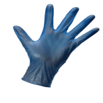 Vinyl Gloves